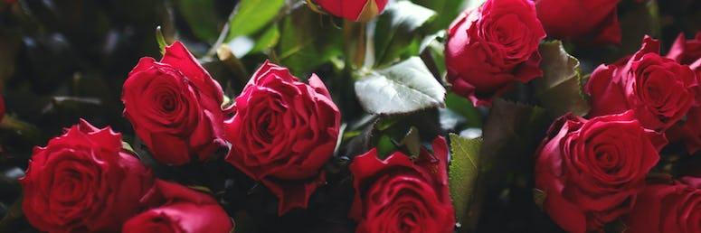 Florist*in